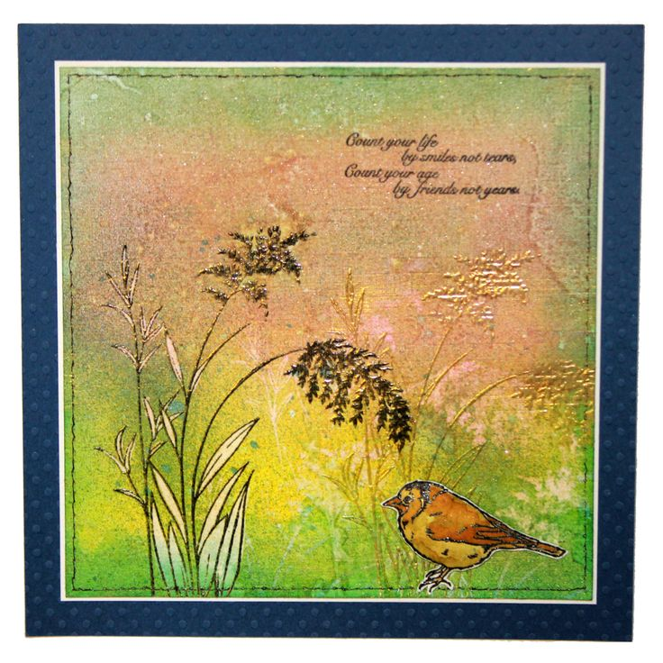This is the gorgeous new Birds & Grasses set designed by Sharon Bennett for Hobby Art. Clear set contains 8 stamps. Overall size of set - 100mm x 260mm approx. All our clear stamps are made with photopolymer resin. As seen on Create & Craft. This Stunning card was made by Kim Reygate