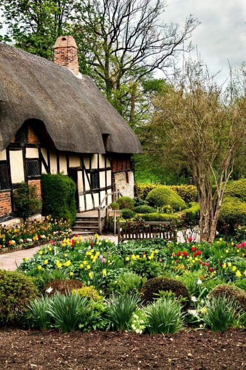 One of the most famous, and most photographed thatched cottages in the world is Anne Hathaway's Cottage (above) at Shottery, near Stratford-Upon-Avon. It is here that Shakespeare is said to have courted Anne before they married. The skilled art of thatching is still alive and well in the UK today. Thatchers often leave their own unique signature on the newly thatched roofs, from decorative ridge designs to reed peacocks and corn dollies.