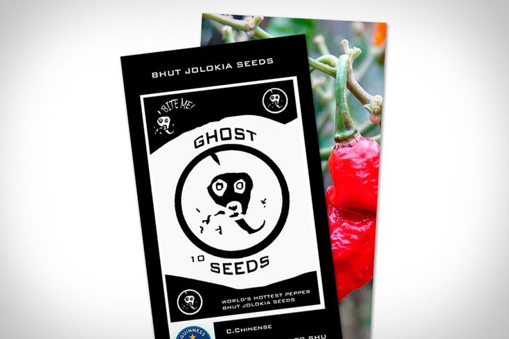 Tired of paying premium prices for your favorite ghost chili-based, blow-your-taste-buds-off treats? Grow your own with some Ghost Pepper Seeds ($10-$30). Each of these packets includes 10 Bhut Jolokia (the Ghost Pepper's real name) seeds, as well as growing instructions.