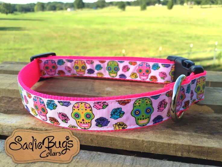 """You will love this Sugar Skull dog collar. Choose your nylon backing color, and plastic/metal/metal engraving options. (Photo shown with a plastic buckle, hot pink nylon, in 1"""" width) SIZES: M (12"""" -"""