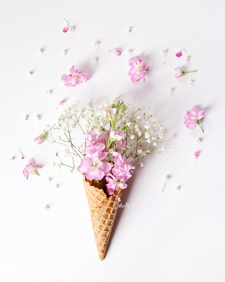 """Stock Flower Cone""- Pretty pink stock flowers and baby's breath in an ice cream cone. Great for a nursery or anywhere you need a smile. :) Fine Art Print - Professionally printed upon order. My photo"