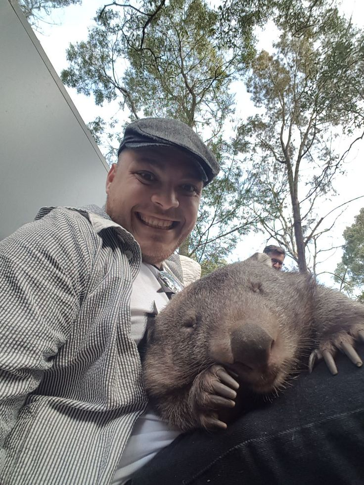 Met a wombat called Maggie today http://ift.tt/2qwq1Mf