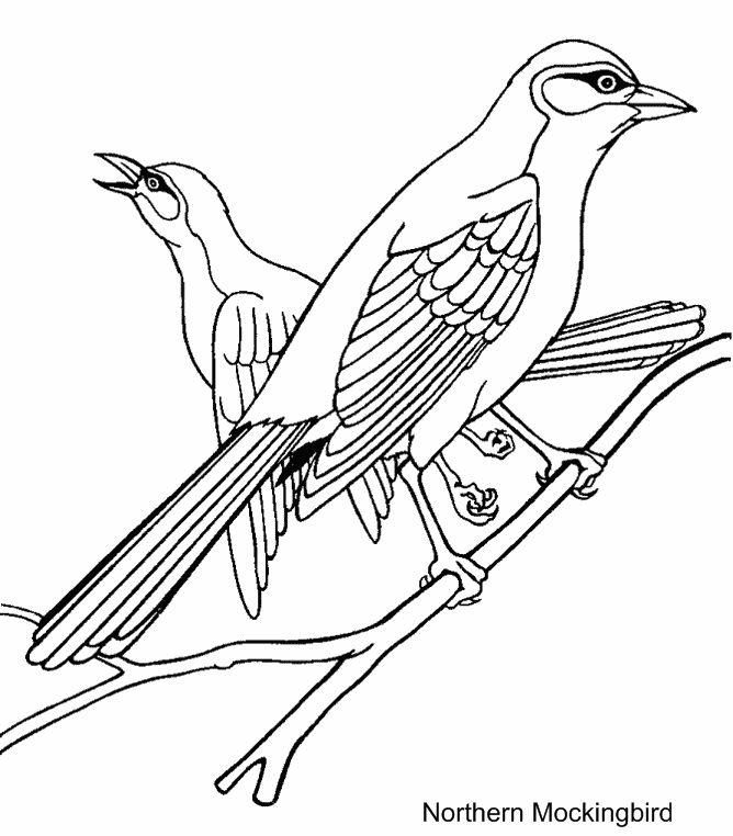 Printable Bird Coloring Pages   Arc art   Pinterest   Bird