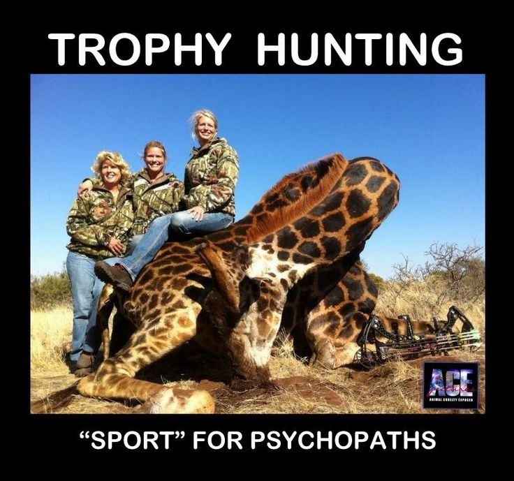 More like Sociopaths who love to hurt things for their own pleasure.   Make no mistake: Trophy hunting is setting wildlife conservation back, and there are better ways to save these animals than by shooting them.