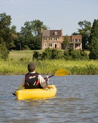 Jug Bay kayak rentals - $20 for the whole day