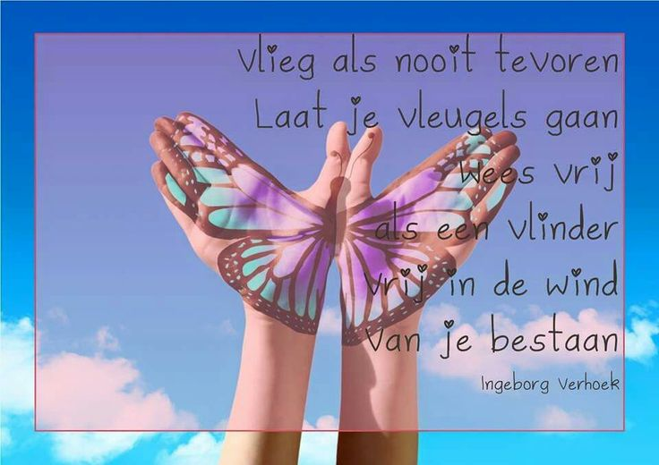 Vrij www.coachhetleven.nl