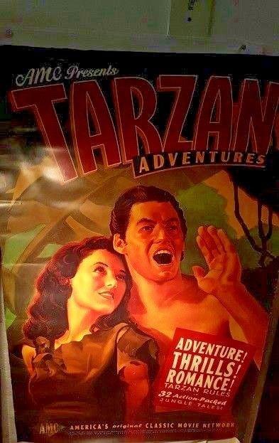 "AMC Presents Tarzan Adventures  Original Movie Poster  Original 47""x27"""