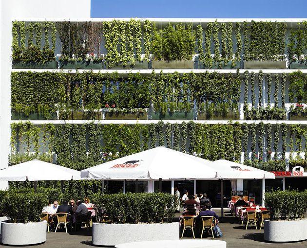 Green facades transforming lifeless buildings 02
