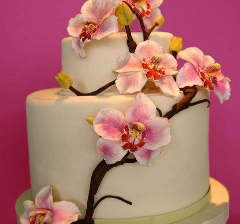 Google Image Result for http://s3.amazonaws.com/wedding_prod/photos/orchid_cake_m.jpg