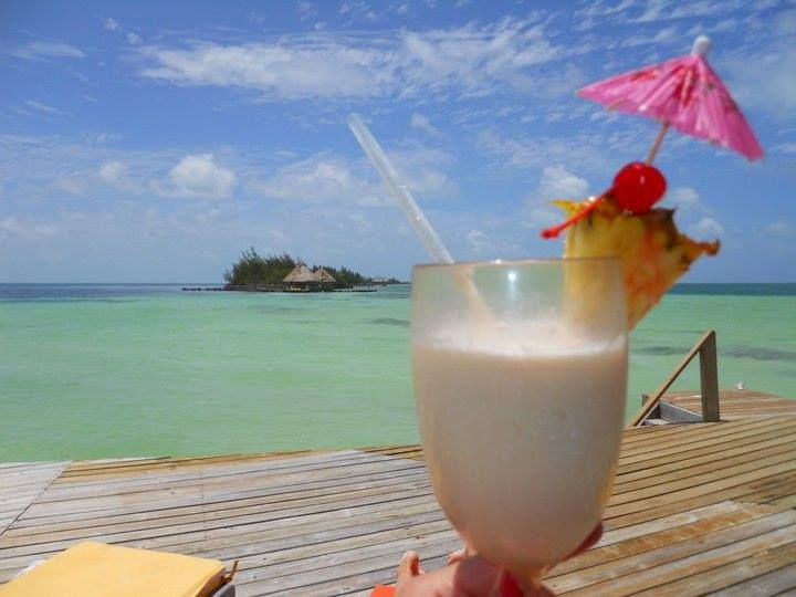 25 Best Tropical Infusion Drinks & Food Images On