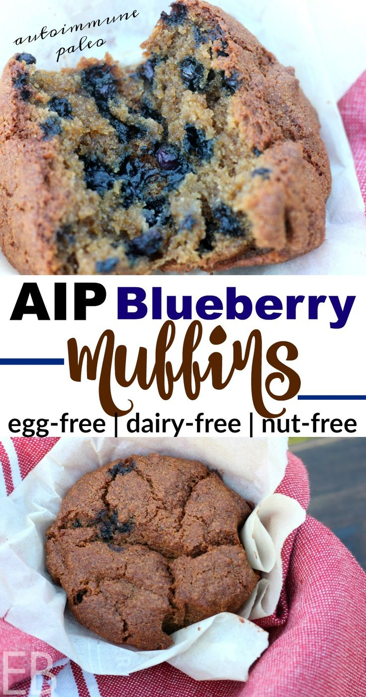 AIP Blueberry Muffins {autoimmune protocol, egg-free, dairy-free, nut-free; moist and delicious; easy ingredients!} #aipmuffins #aipblueberrymuffins #autoimmuneprotocol #paleoblueberrymuffins #aip