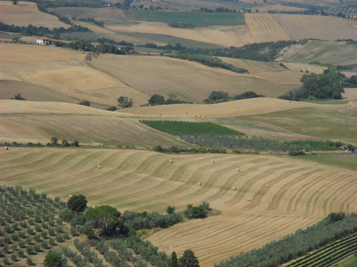 De boerderij Podere del Vescovo is een prachtige #agriturismo in #Toscane, met panorama op de hoge Maremma. De keuken maakt gebruik van biologische producten van hoge kwaliteit van eigen bedrijf, eigen groentetuin en streek. #boerderijvakanties
