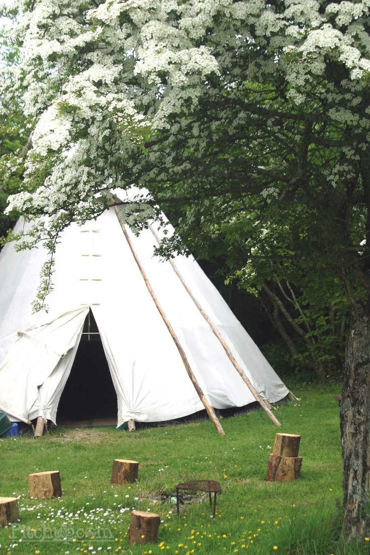 Cornish Tipi Holidays, Polzeath, Cornwall - Pitchup.com