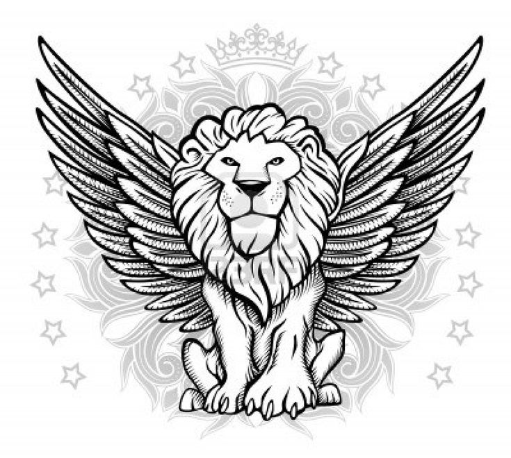 http://www.123rf.com/photo_15398724_winged-lion-front-view-drawing.html
