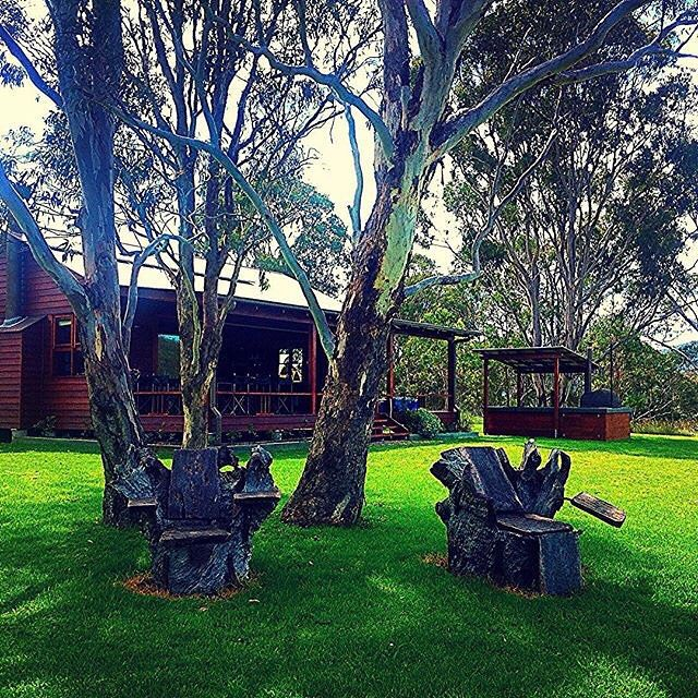 Time to put your feet up and take in the view at Spicers Canopy Lodge. Photo by onedayiwent via Instagram #spicersretreats #spicerscanopy