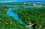 I want to go on a Jungle Adventure at the Riviera Maya!
