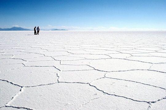 Cet immense désert de sel appelé Salar de Uyuni s'étend sur une superficie de 12 500 km². Ces paysages lunaires accueillent notamment de nombreuses colonies de flamants roses