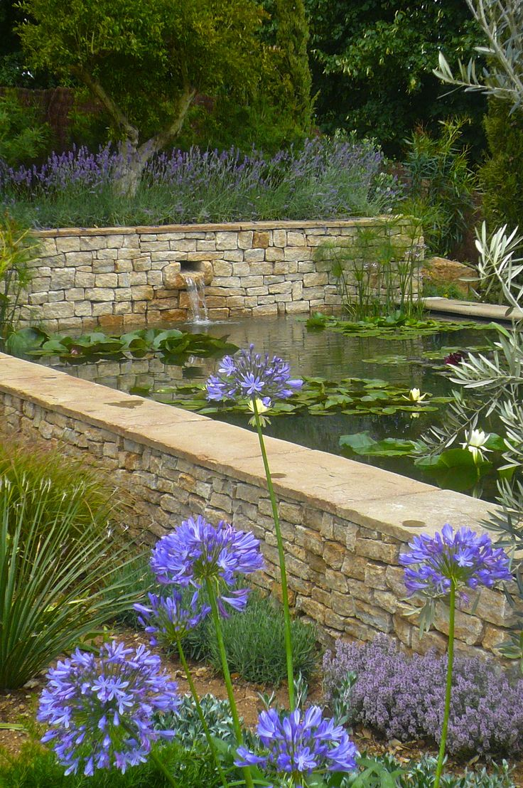 Through the Agapanthus tot he raised pond designed by Claudia de Yong www.claudiadeyongdesigns.com and www.thegardenspot.co.uk