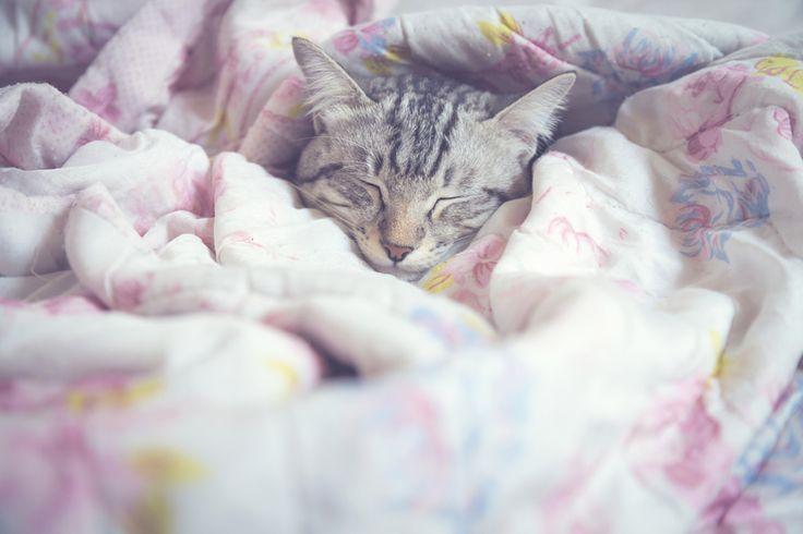Bien choisir sa couette pour bien dormir
