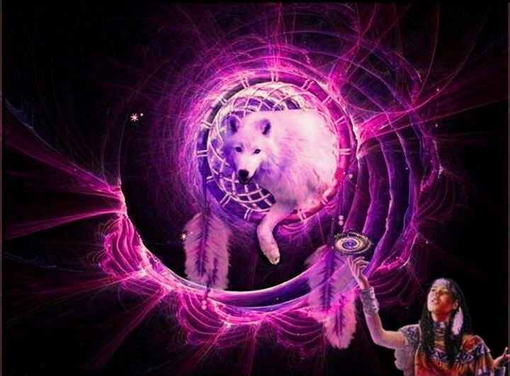 Purple Wolf Native American Wolf Spirit