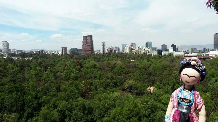 El bosque de Chapultepec.