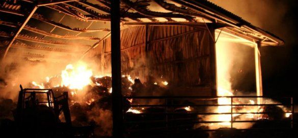 =======INDEPENDANCE DE LA KABYLIE=======: Le bureau du FLN à Azeffoun incendié   Tamurt.info...