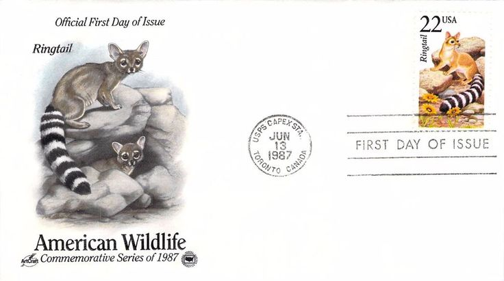 1987 Ringtail Hand Colored Art Craft First Day Cover