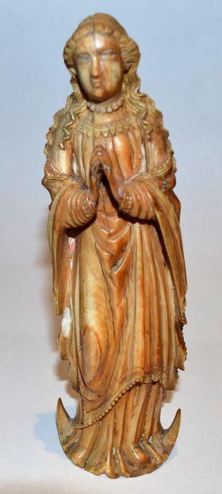 Wassende maan Madonna Frankrijk 17e eeuw ivoor  Ivoor Madonna delicate kunststof carving full figuur voorstelling van de moeder Gods met een afgeplatte terug en golvend haar gekleed in een pleated gewaad. Benadrukken van de kromming staat ze op een halvemaan in gebed met gevouwen handen. Overblijfselen van de montage- en gold-plating hoogte: 175 cm  EUR 500.00  Meer informatie