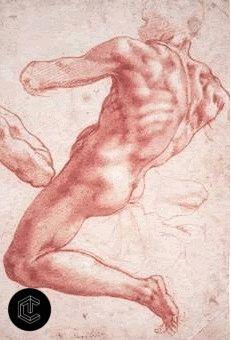 Michelangelo Buonarroti - Disegni
