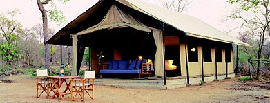 Khoka Moya's contemporary-style tents are set on both sides of a riverbed, in the Manyeleti. Style: Tented Camp Comfort Level: Comfortable Rooms: 12