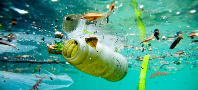 Biodegradable Plastics Are Not the Answer to Reducing Marine Litter, Says UN