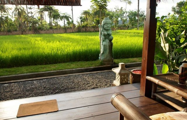 Rice paddies on the doorstep of our traditional Balinese bungalows. Bliss.