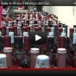 Italia in Rosa // Moniga del Garda (Bs)