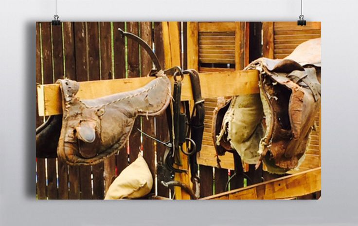 Selection of authentic & replica saddles, bridles, blankets & horseshoes. http://www.prophouse.ie/portfolio/equestrian-props/