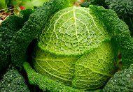 Dnes kúpite kyslú kapustu na každom rohu, ale s tou domácou sa nedá porovnať. Viete, ako sa táto kvasená zelenina pripravuje? Ako správne naložiť kapustu?