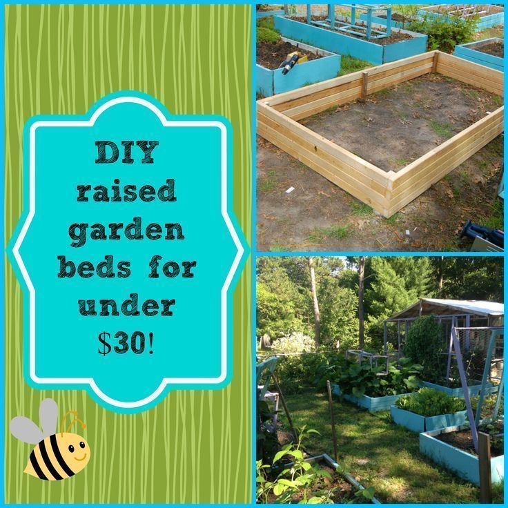1511 Best Vegetable Gardens Images On Pinterest Farmers Farms And Homesteads