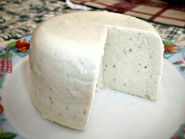 Tofulino   Vegan blog - Ricette Vegan - Vegane - Cruelty Free