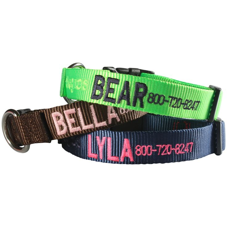 Brand spanking new embroidered collars - made right here in Fargo, ND! High quality nylon with super durable contrast stiching make for a stylish and practical collar!