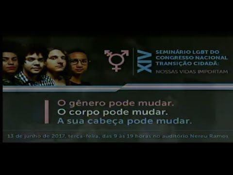DIREITOS HUMANOS E MINORIAS - 14º Seminário  LGBT - 13/06/2017 - 09:56