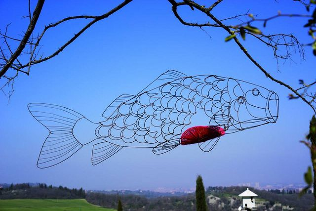 carp with sunrise by Chizu Kobayashi