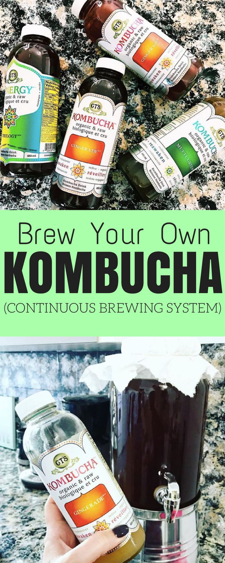 Brew your own Kombucha with a continuous brewing system
