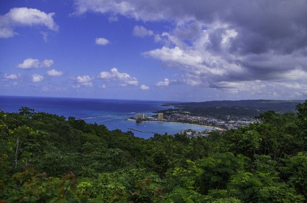 Interesting Facts About Jamaica: Landscape view from the skylift at Mystic Mountain