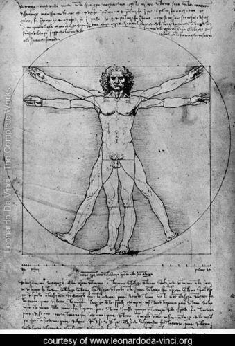 Vitruvian Man, a  Leonardo Da Vinci