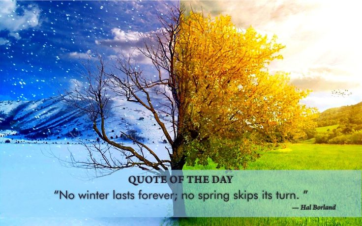 #Quoteoftheday: No winter lasts forever; no spring skips its turn. ~Hal Borland Stay with the NATURE with US & #ProtectEnvironment http://www.amaherbal.com