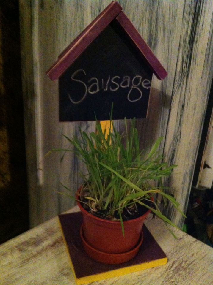 My son and I built this at Home Depot, we decided to put cat grass in it and give it to our cats, it is a chalk board plant stand