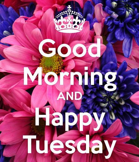 Good Morning And Happy Tuesday!