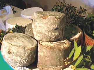 alcuni tipici formaggi sardi