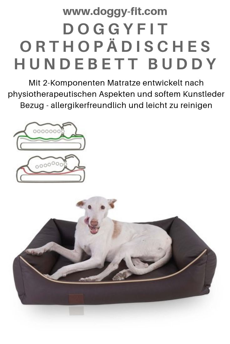 Orthopadisches Hundebett Buddy Kunstleder Farbe Braun Orthopadisches Hundebett Hunde Bett Hunde