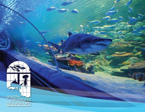 The Greater Cleveland Aquarium, right in my hometown Cleveland, Ohio. I'm hoping to knock this one off my list with my best friend over spring break.