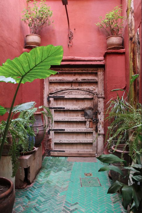 Terracotta walls, plants, green tiles, distressed wood. Riad Madani, Marrakech, Morocco